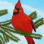 """""""Cardinal"""" by anthonydunphy"""