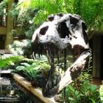 """""""7-25-09 botanic gardens 038"""" by kdw42"""