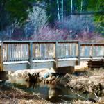 """The Creek Bridge"" by LJdesigns"