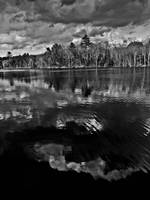 Silver Lake Reflection in Black and White ll
