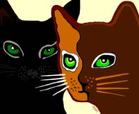 The Brown & The Black Cat