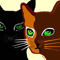 The Ocicat & The Black Cat Art Prints & Posters by Marian Cates