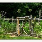 """Sedgewick Garden Landscape Gate"" by CuriousEye"