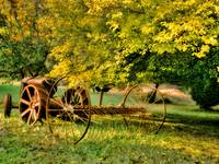 Harvesting in days gone by