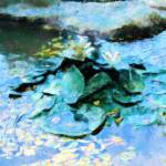 """Water Lillies"" by Debrene"