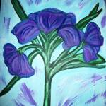 """Blue Iris"" by Sborshoff"