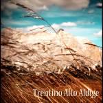 """South Tyrol (II)"" by loreee"