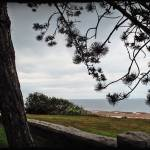 """Omaha Beach under Trees, Normandy"" by jbjoani2"