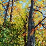 """Autumn Oaks"" by AbbieGroves"