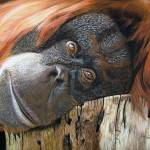 """Orang fertig"" by Rubina-Art-Gallery"