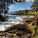 """MAUI SHORELINE"" by NaturePlusStudios"