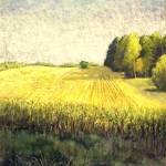 """Michigan Corn Field"" by ediehamblin"