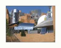 Frank Gehry MIT Collage of Shapes