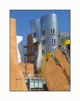 Frank Gehry MIT Building Cylinder Composition