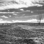 """""""driveway"""" by khendu314"""