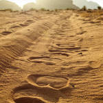"""Desert Sunrise and camel tracks"" by jcarillet"