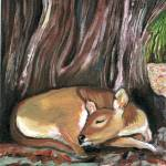"""Sleeping Deer"" by ACastelli"