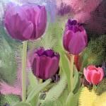 """""""Tulip-ish"""" by tlskarma"""