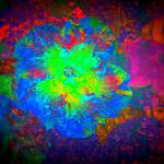 """Vibrant Flower Series 5"" by JenniferLaskerWhite"
