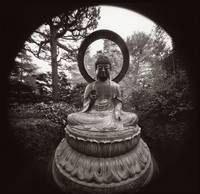 Buddha, Golden Date Park, San Francisco by WorldWide Archive