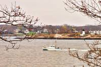 Gloucester Harbor