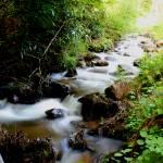 """""""River"""" by nativenerd"""