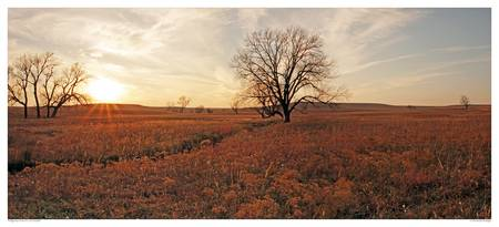 Sunset on the Tallgrass Prairie (1)