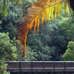 """Faux Rainbow near Hanauma Bay"" by photographybysharonwoerth"