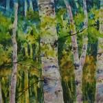 """""""Aspen Grove"""" by Newmoon"""