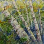 """""""A New Look at Aspens"""" by Newmoon"""