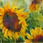 """""""Sunflower Splash"""" by Newmoon"""