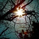 """Sunshine 2"" by DanCarrillo"