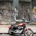 """""""Harley"""" by lfstyl"""