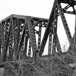"""Rail Bridge"" by yakk0dotorg"