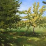 """""""Elizabeth Park"""" by luiscolan"""