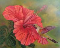 Watermelon Red Hibiscus with Hummingbird