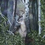 """Dark Forest with Deer"" by lesamac1"
