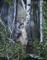 Dark Forest with Deer