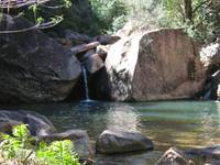 Rock Pool Emma Gorge