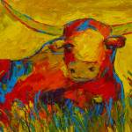 """Texas Longhorn"" by roxiranch"