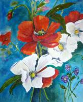 Poppies and Dogwood