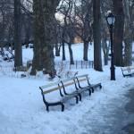 """""""winter in central park"""" by RitaFajita"""