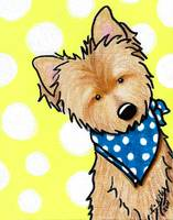 Cairn Terrier on Dotted Yellow