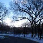 """""""View of Central Park from 59th Ave"""" by RitaFajita"""