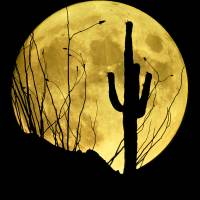 Rising Full Moon & Cactus Art Prints & Posters by Frank Zullo