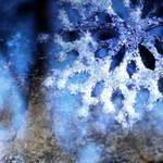 """""""snowflake in blue 8"""" by dlmtleArt"""