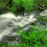 """Mima Falls"" by BlakeM"