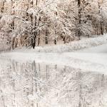 """Winter Wonderland"" by Freezeframe"