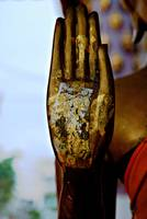 Raised Buddha Hand (Colour)