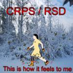 """NC Winter CRPS/RSD Bees & Blaze"" by Samantha_Adcock"